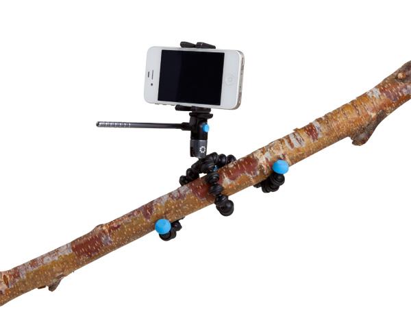 video-branch