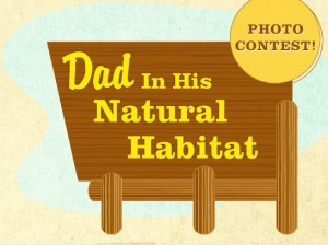 photo contest in photosharing community - Dad in his natural habitat
