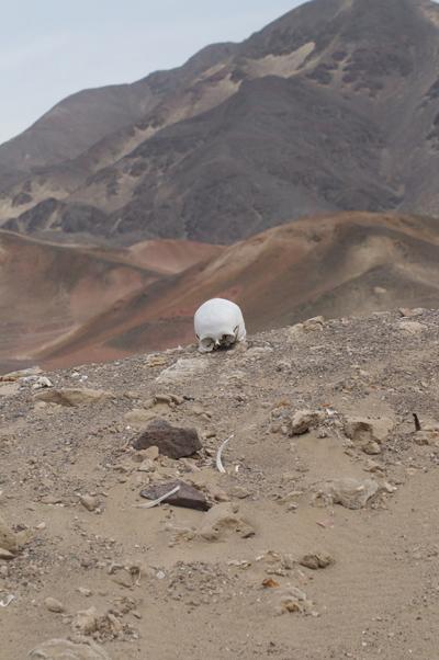 Nazca-01