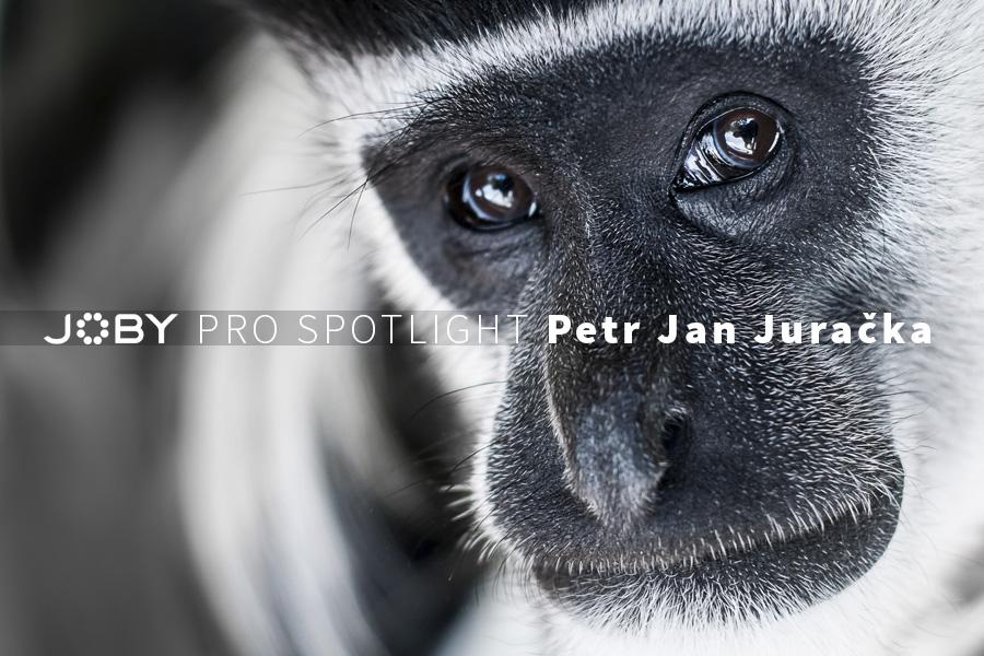 Petr-Jan-Juracka-Top