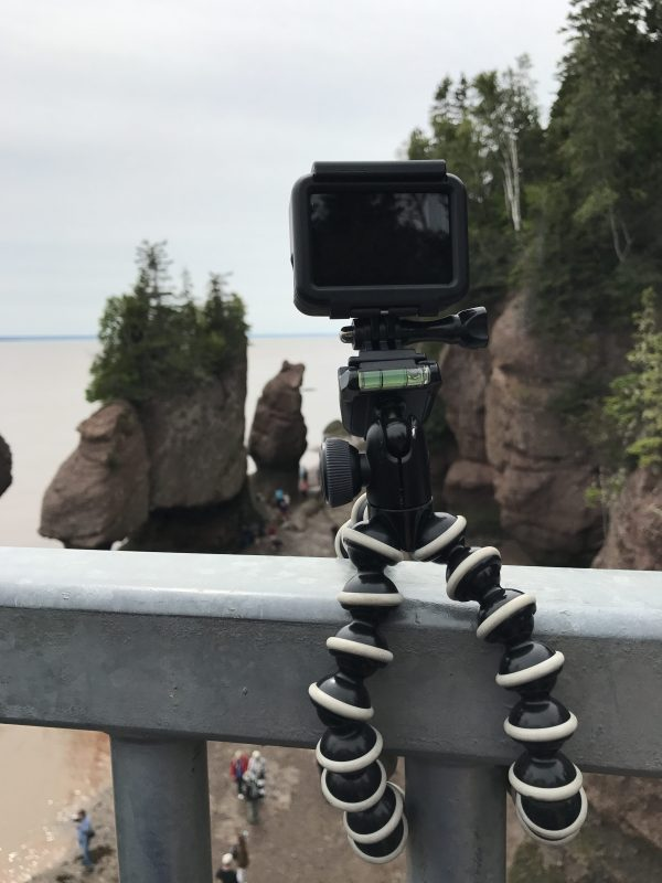 gorilla pod at Hopewell Rocks